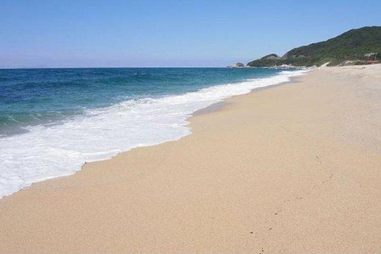 私人旅遊:屋久島的專業本地導遊全日徒步之旅