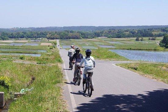 Tour in bicicletta in discesa (con esperienza pranzo)