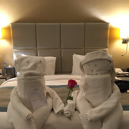 Great towel art from our house keeping team!
