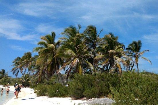 Isla Contoy und der Isla Mujeres mit...