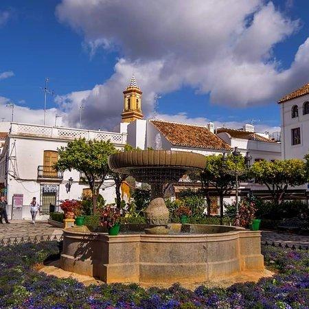 Beautiful #Estepona