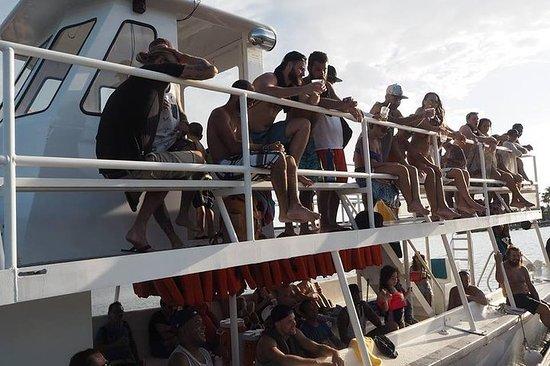 Festbåt Cruise