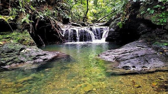 Batang Duri, Brunei Darussalam: Dr fish spa pool