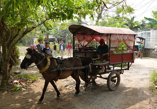 Mekong Delta, Vietnam: Horse carriage for tourists in Delta Mekong