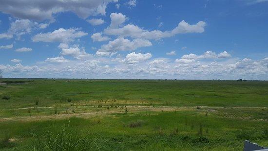 Mongu, زامبيا: The Barotseland flood plains