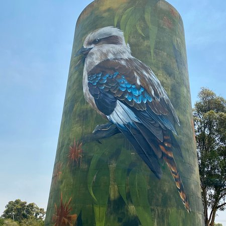 ‪Deniliquin Water Tower Mural‬
