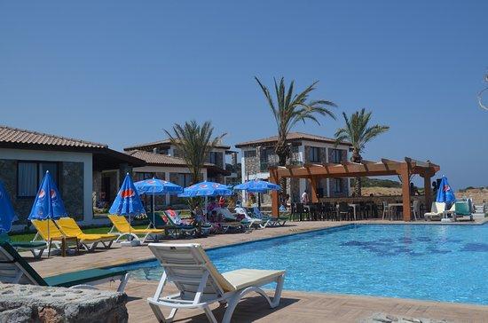 Tatlisu, Турция: Ardıç Ağacı Tatil köyümüzde denizin yanı sıra havuzumuza da bu yaz keyfine varacaksınız.(18 metre uzunluğunda 2 metre derinlik)yetişkinler için ve ayrı olarak çocuk  havuzumuz bulunmakta.Havuz başında ki barımızda sizin için hizmetinize açıktır.