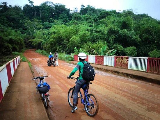 Edea, Cameroon: Sur la route qui va à Pongo songo. je suis allé en décembre dernier à la découverte des chimpanzés. j'ai choisie d'y aller à vélo, le parcours est simplement magnifique, loin des routes bitumées super fréquentées. il faut juste prendre mes précaution car il y a de la poussière en saison sèche. Mon guide, kenfack dongmo bruno, +237 653442004 résidant à douala vous sera certainement favorable pour vous aider à pédaler 50 km pour aller vivre cette expérience.