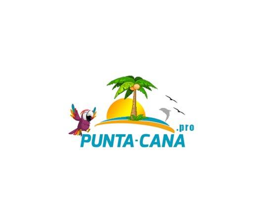 Логотип компании Punta Cana Pro