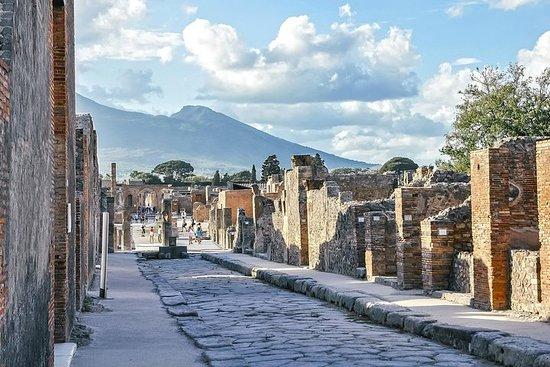 Pompeii-excursie vanuit de haven van ...