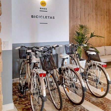 Alquiler de bicicletas para visitar la ciudad