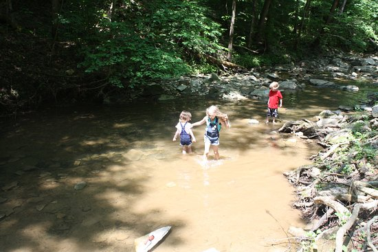 Olive Hill, KY: Creek