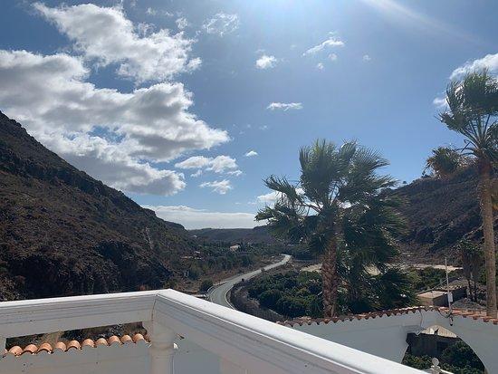 A beautiful oasis