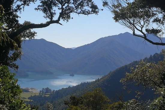 Walk Pelorus NZ