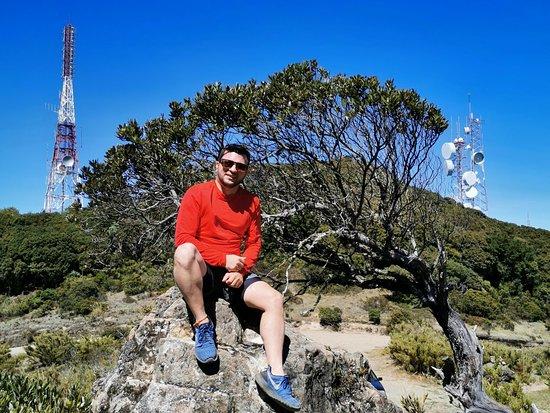 Si vas conduciendo por la ruta 2 entre San Jose y Pérez Zeledón puedes para y disfrutar de las vistas majestuosas del Cerro de La Muerte 3400 msnm