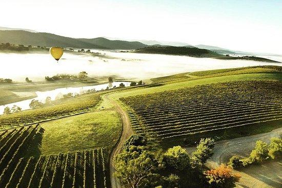 [私人游览]丹德农山和亚拉河谷酒庄之旅