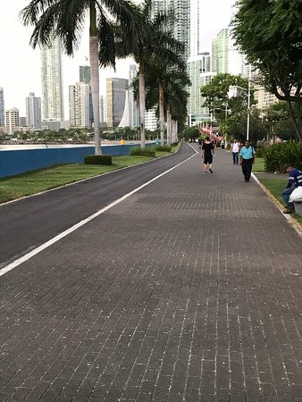 Jogging and bicycle trail next to hotel. It goes entire length of bay.