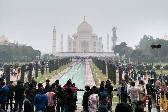 Visita de 1 dia ao Taj Mahal e Forte...