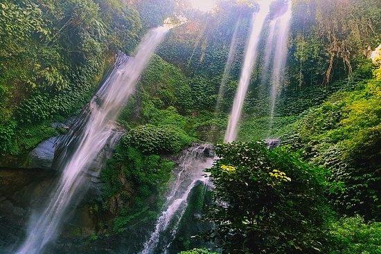 Bali day tour - explorando o ponto mais...