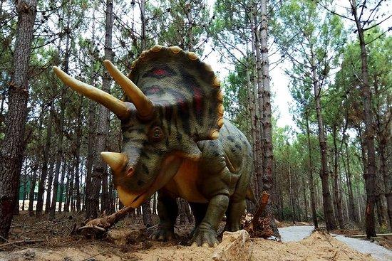 Family Day Trip to Dinosaurs Park e Óbidos - Tour privato da Lisbona