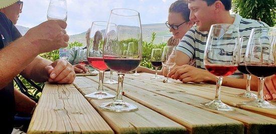 Lovely wine tasting
