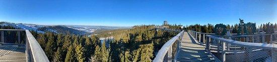 Панорама с прогулочной догори от смотровой башни