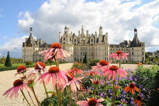 Recorrido de un día por los castillos del Valle del Loira: Blois...