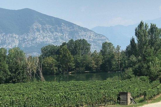 Halbtägige Weintour ab Mailand...