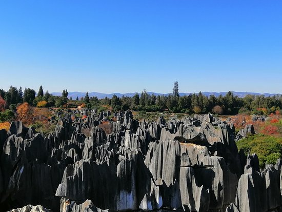 Stone forest view from top of the stone..