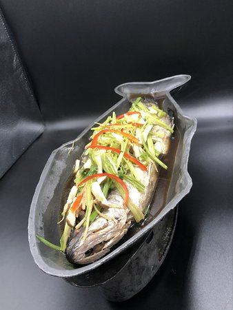 Steamed white snapper   ปลากระพงนึ่งซีอิ๋ว