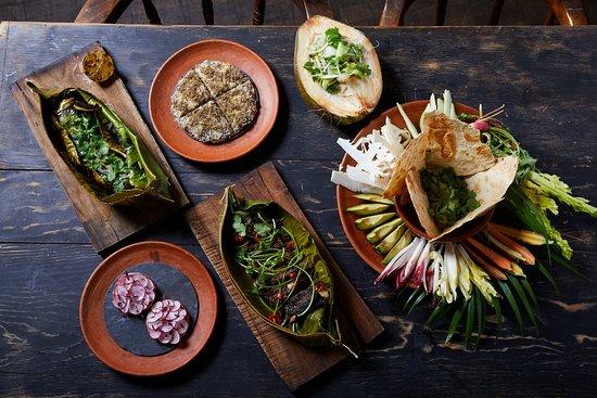 Gitano Taste of the Yucatan