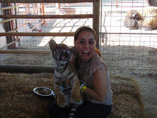 Zoologico de Reynosa