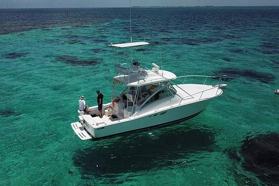 Private Charter 32ft Express Cruiser...