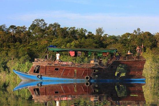 Oranghi e primati del Borneo, tour privato di 4 giorni da