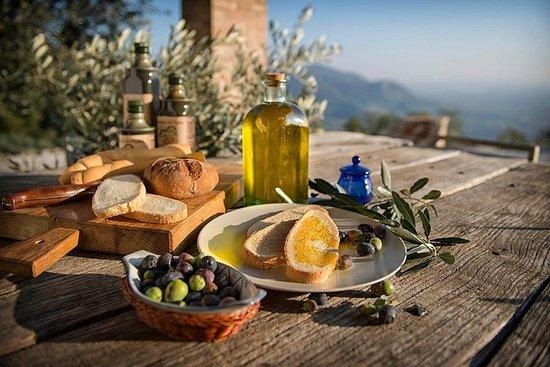Fra Padua olivenolje og vin i Euganean Hills
