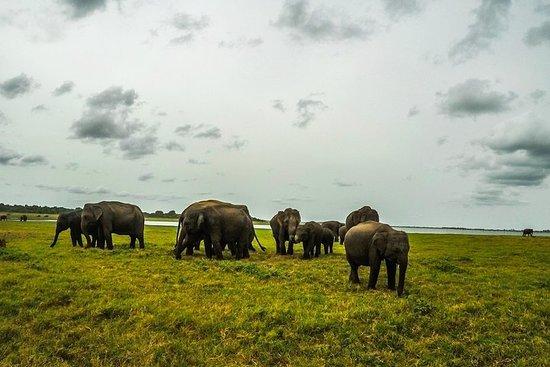Trekking Advanture Sri Lanka