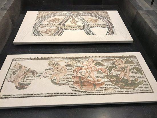 免排隊:阿布扎比羅浮宮門票照片