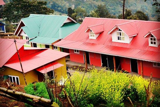 Kanyam, Nepal: Welcome to Hotel Green Carpet