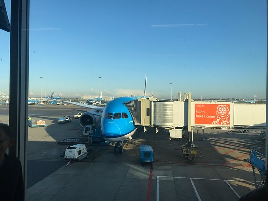 KLM Royal Dutch Airlines: The Dreamliner to SFO parked at Schiphol International Airport