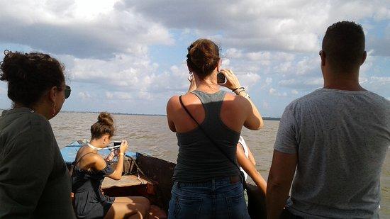 ***** Les meilleures expériences avec Grands Chefs Multi Service en Guyane, Voyage au Suriname. Weekend au Suriname à Commewijne 2 jours!  Circuler à Nieuw Amsterdam et ses environs  et observer les dauphins au couché du soleil. 'roses d'amazonie'   Contactez-nous en Guyane:  Courriel:grandschefs@yahoo.com  Tél/WhatsApp +594 694 22 47 22