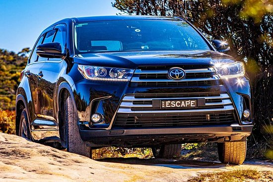 Small Group Blue Mountains SUV Tour