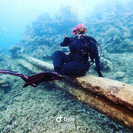 大堡礁照片