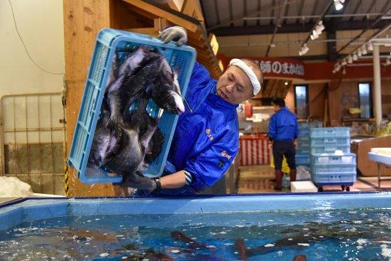 漁港で競り落とした鮮魚は、水槽で活きたまま販売