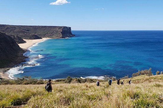 Hike into the Royal National Park