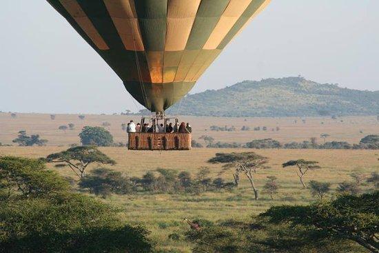 Národný park Serengeti, Tanzánia: Hot-air ballooning over the Serengeti plains  weaversbasecamp@gmail.com