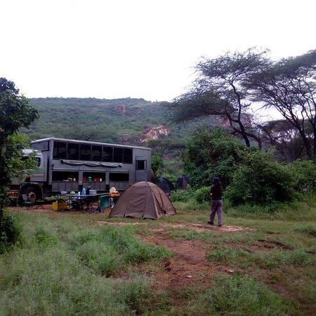 Numerous pics from different safris#kibo safari camp in Amboseli#mt ololokwe in samburu#lake Naivasha