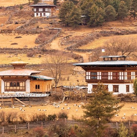 Wangdue Phodrang District ภาพถ่าย