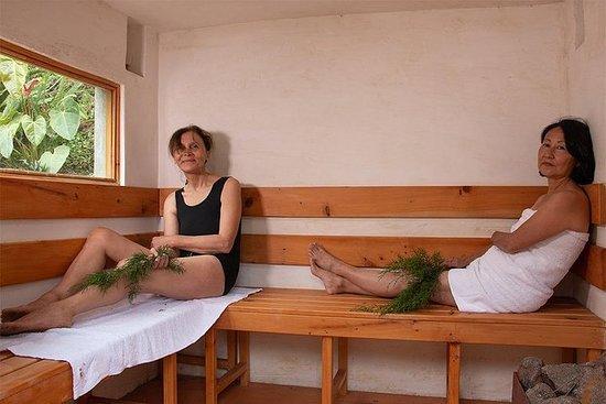 Sauna dans les bois
