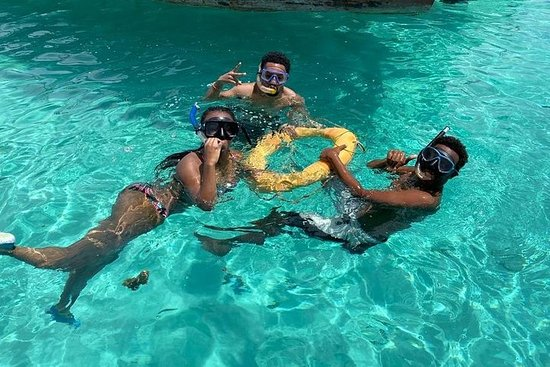 Snorkelen op Mnemba-atol - Volledige ...