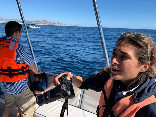 Humpback Whale Watching in Cabo San Lucas Φωτογραφία